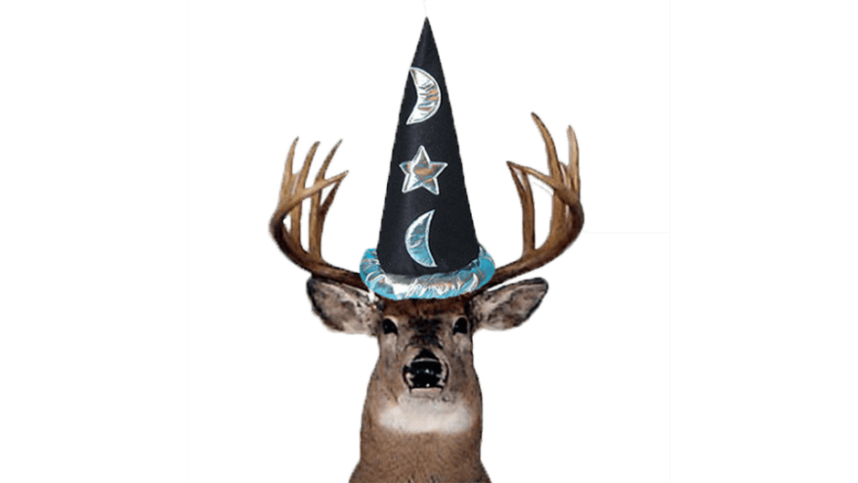 magic deer
