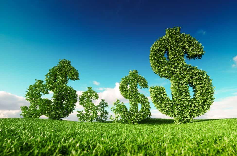 sustainability branding